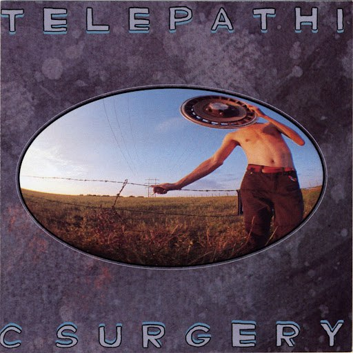 The Flaming Lips альбом Telepathic Surgery