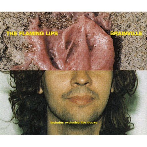 The Flaming Lips альбом Brainville [Maxi-Single With Two Live Tracks]