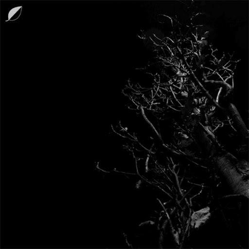 Christian Löffler альбом Heights
