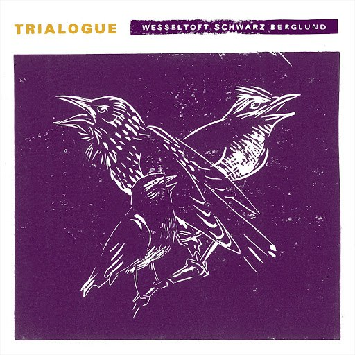 Bugge Wesseltoft альбом Trialogue