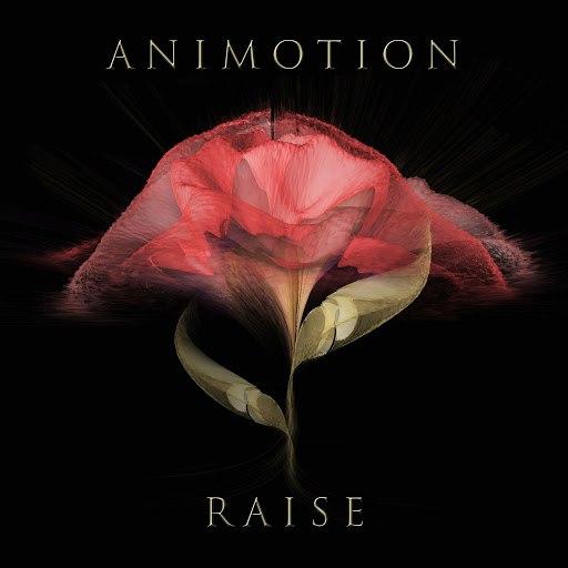 Animotion альбом Raise Your Expectations