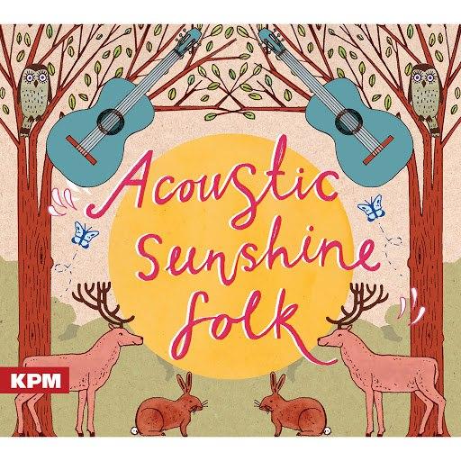 Vasco альбом Acoustic Sunshine Folk