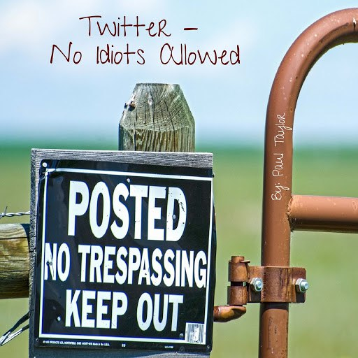 Paul Taylor альбом Twitter: No Idiots Allowed
