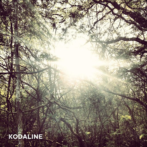 Kodaline альбом Lose Your Mind