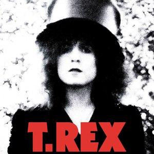 T. Rex альбом The Slider