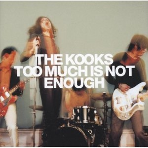 The Kooks альбом Too Much Is Not Enough
