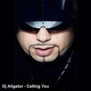 Dj Aligator альбом Calling You