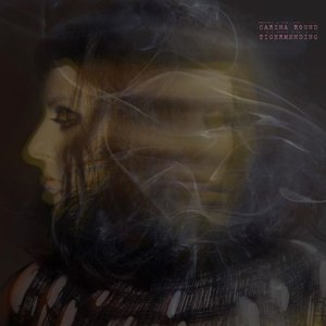 Carina Round альбом Tigermending (Bonus Track Version)
