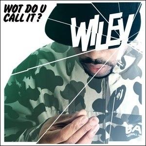Wiley альбом Wot Do U Call It?
