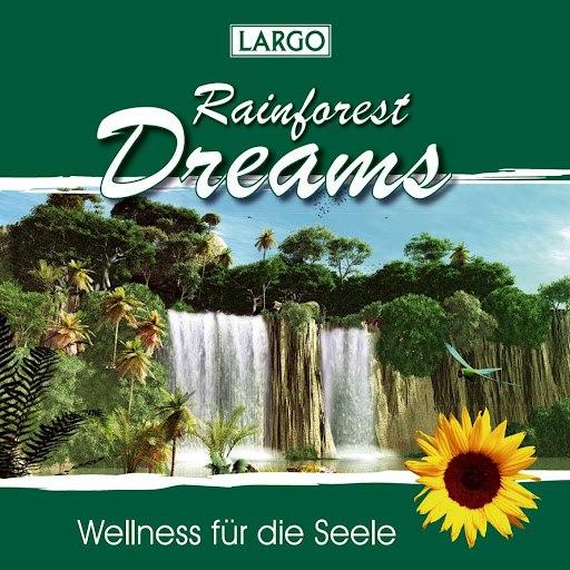 Largo альбом Rainforest Dreams - Stimmungsvolle Naturgeräusche mit Entspannungsmusik (GEMA-frei)