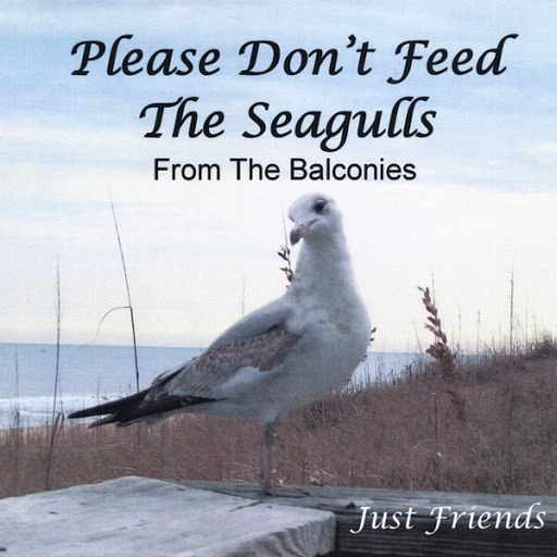 Just Friends альбом Please Don't Feed the Seagulls from the Balconies
