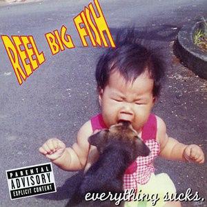 Reel Big Fish альбом Everything Sucks