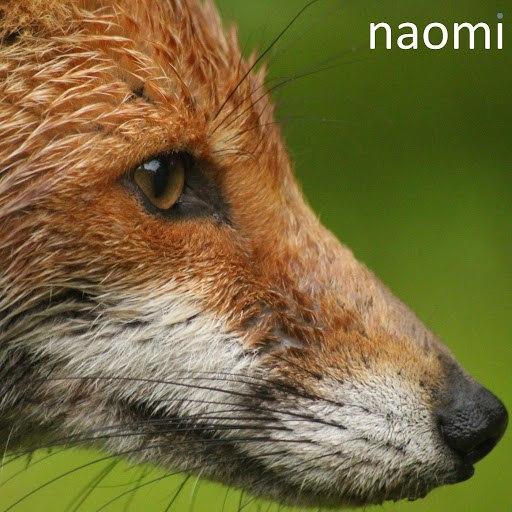 Naomi альбом Naomi