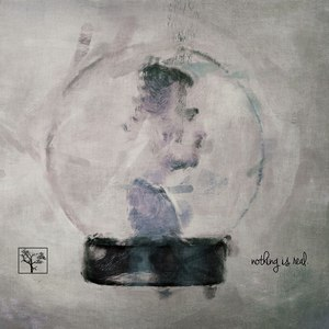 The Flashbulb альбом Nothing Is Real