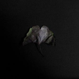 Memorials альбом Кулуар