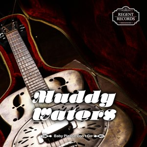 Muddy Waters альбом Baby Please Don't Go
