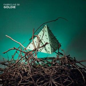 Goldie альбом Fabriclive 58: Goldie