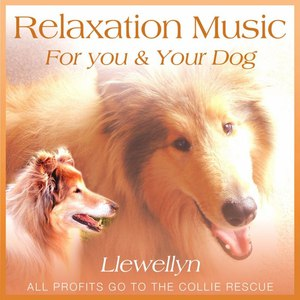 Llewellyn альбом Relaxation Music for You and Your Dog
