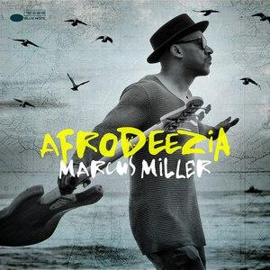 Marcus Miller альбом Afrodeezia