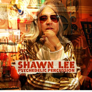 Shawn Lee альбом Psychedelic Percussion