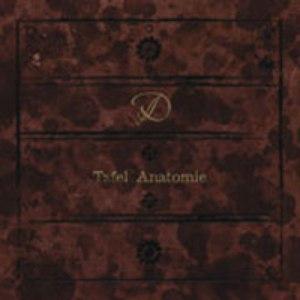 D альбом Tafel Anatomie