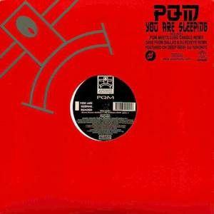 PQM альбом You Are Sleeping (Remixes)