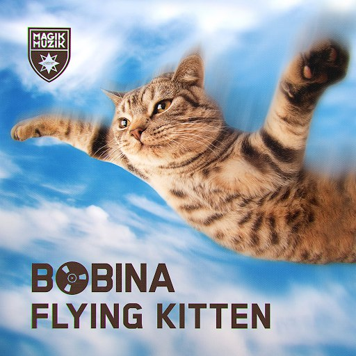 Bobina альбом Flying Kitten