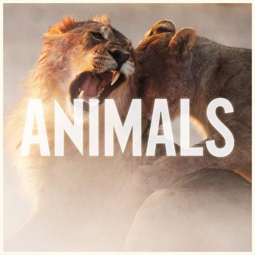 Maroon 5 album Animals