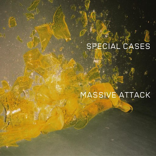 Massive Attack альбом Special Cases