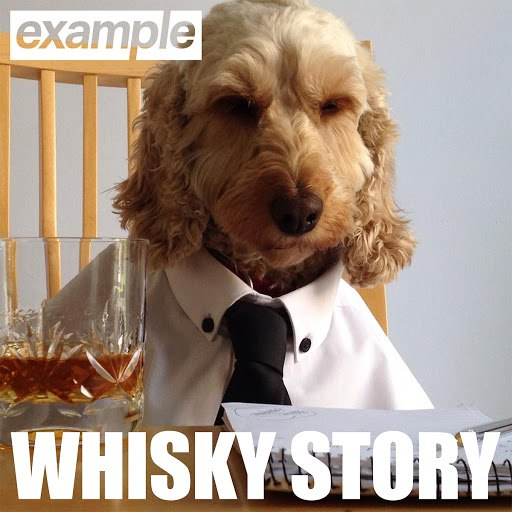 Example альбом Whisky Story