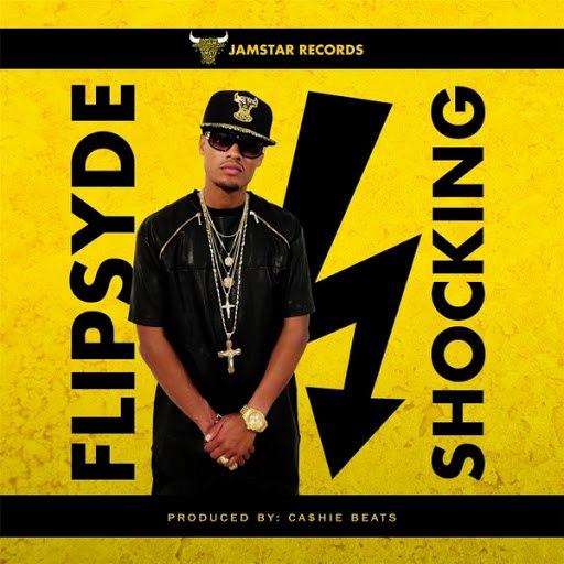 Flipsyde альбом Shocking