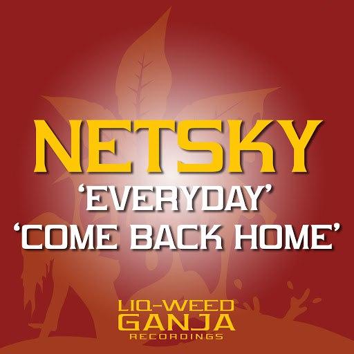 Netsky альбом Everyday / Come Back Home