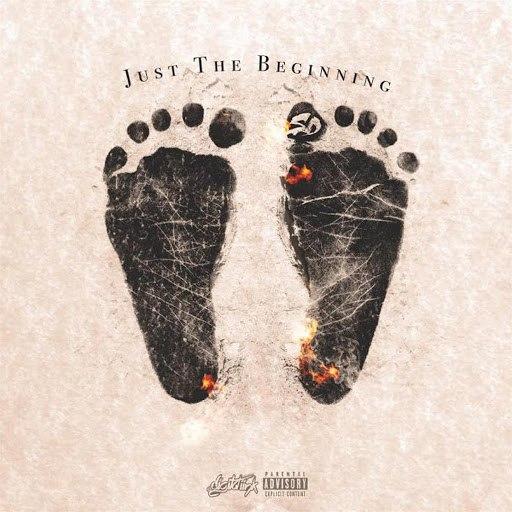 SD альбом Just the Beginning
