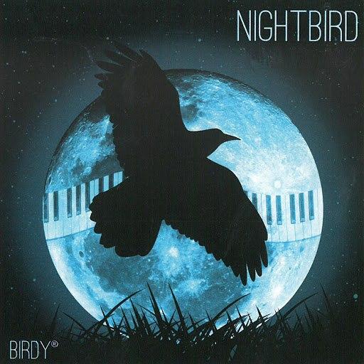 Birdy альбом Nightbird