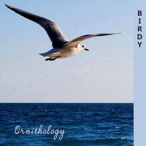 Birdy альбом Ornithology