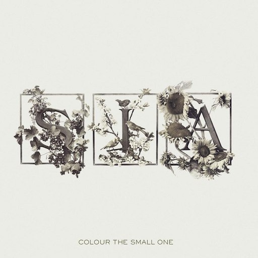 Sia альбом Colour The Small One