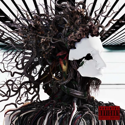 the GazettE альбом Distress and Coma