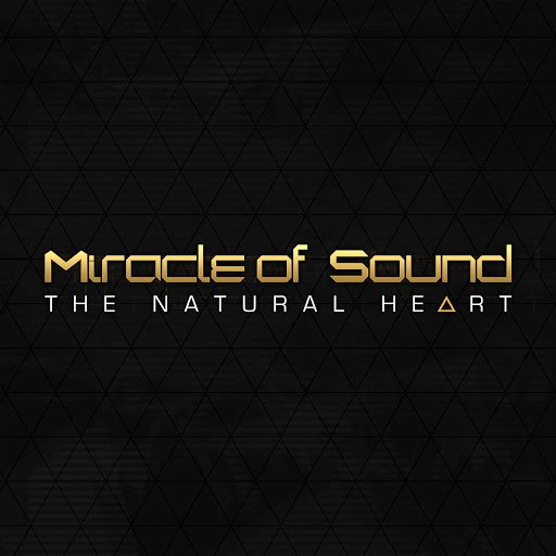 Miracle of Sound альбом The Natural Heart
