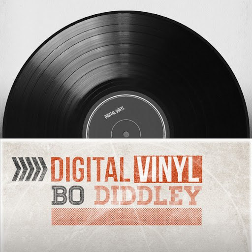 Bo Diddley альбом Digital Vinyl