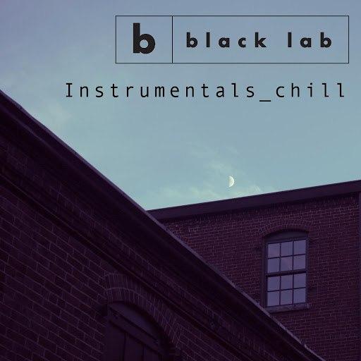 Black Lab альбом Instrumentals_chill