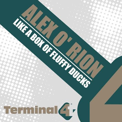 Alex O'Rion альбом Like A Box Of Fluffy Ducks