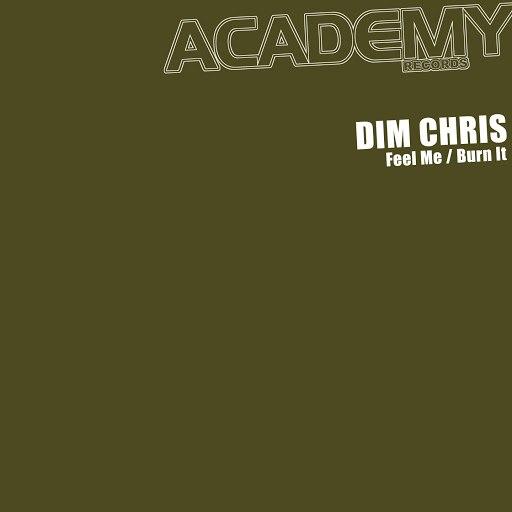 Dim Chris альбом Feel Me Burn It