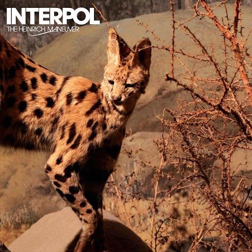 Interpol альбом The Heinrich Maneuver