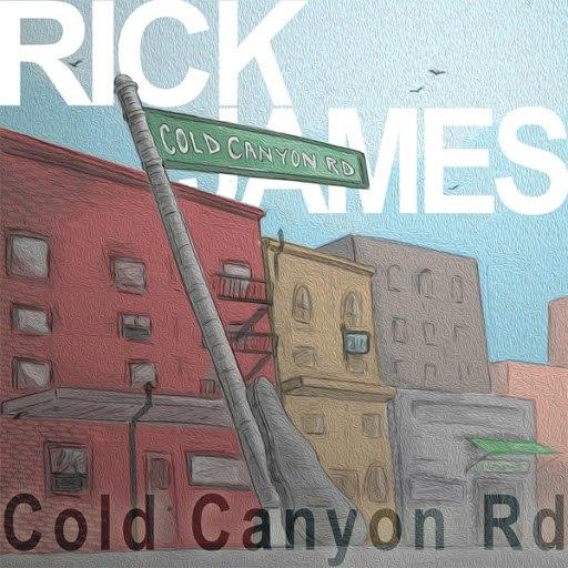 Rick James альбом Cold Canyon Road