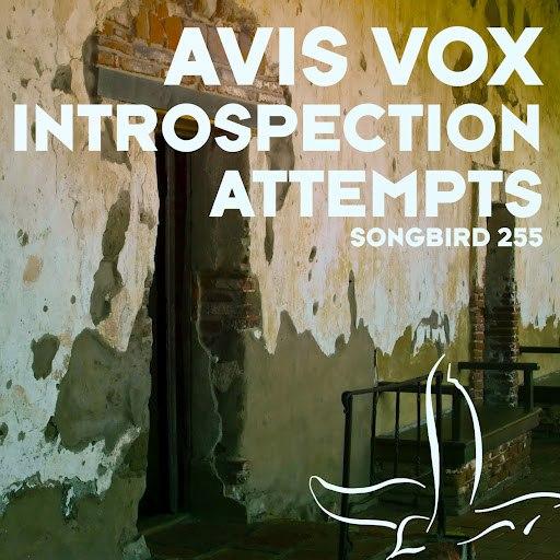 Avis Vox альбом Introspection Attempts