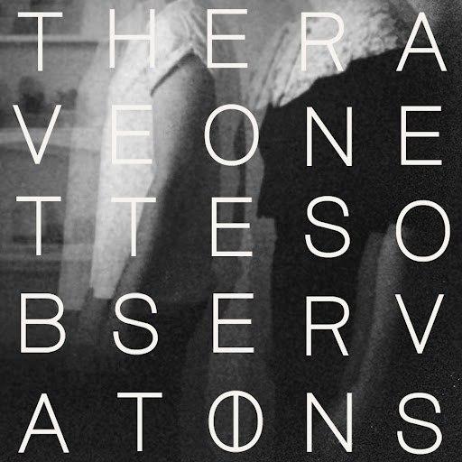 The Raveonettes альбом Observations