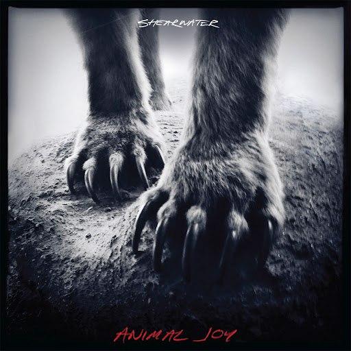 Shearwater альбом Animal Joy