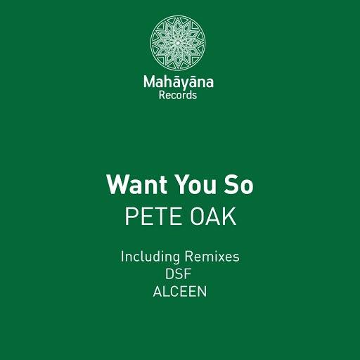Pete Oak альбом Want You So