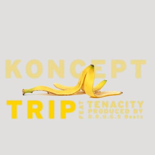 Koncept альбом Trip (feat. Tenacity)