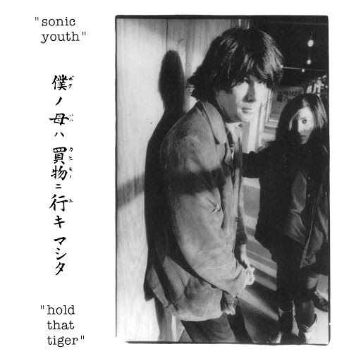 sonic youth альбом Hold That Tiger